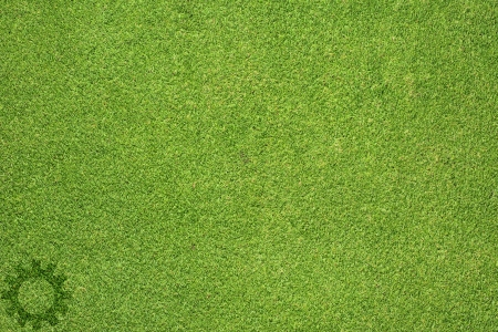 Gear icon on green grass texture and  background