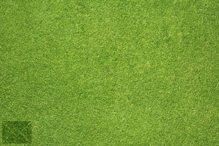Mail icon on green grass texture and  background photo