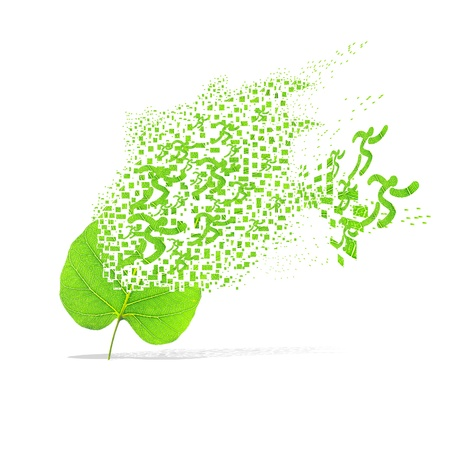 Running leaf of sport weight on white background photo
