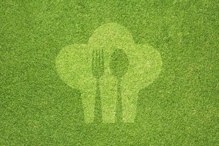 Cook and spoon on green grass texture and  background Stock Photo - 15498904