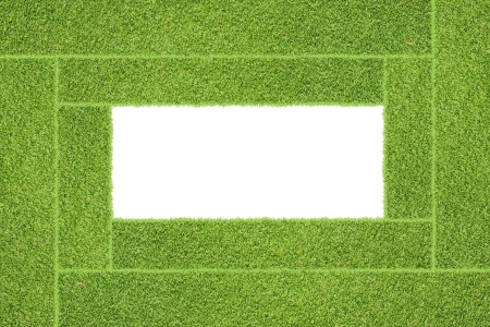 Green grass texture and background Standard-Bild