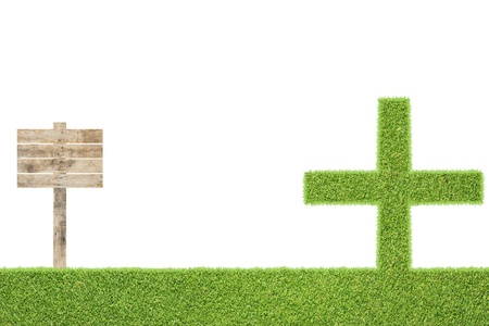 Plus of green grass texture and  background Stock Photo - 15609000