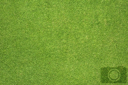 Camera icon on grass background Stock Photo - 16656910