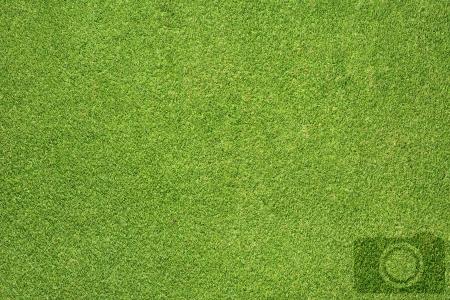 Camera icon on grass background Stock Photo - 16656910