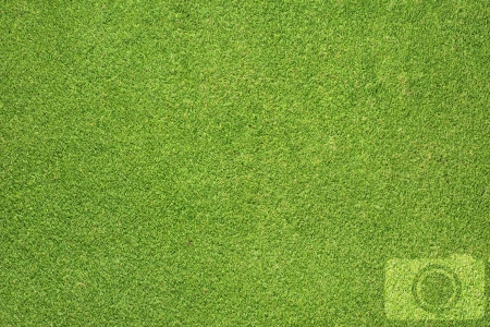 Camera icon on grass background Stock Photo - 16656906