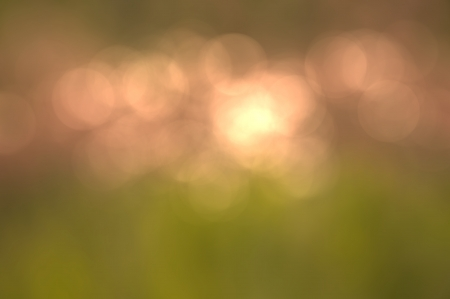 Abstract background green bokeh circles  photo