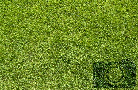 Camera icon on green grass background Stock Photo - 16766395