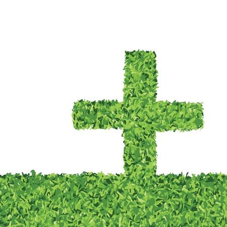 Green grass background Stock Vector - 17100774