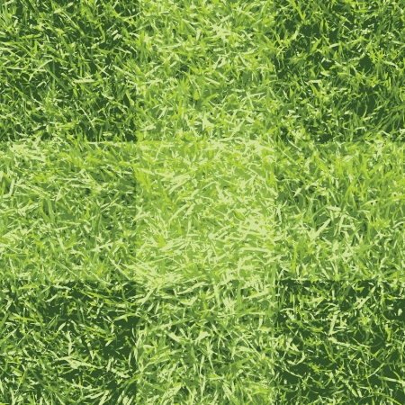 Green grass background Stock Vector - 17100881