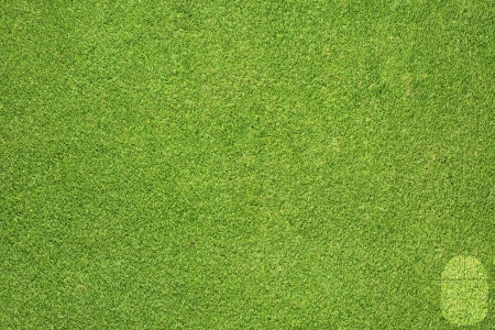 Mouse icon on green grass background Stock Photo - 17195712