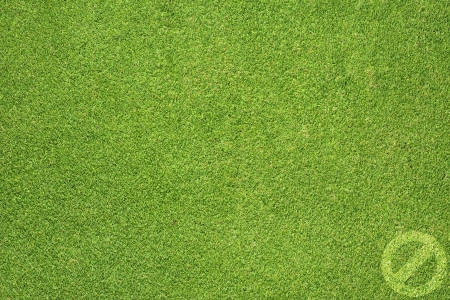 Label icon on green grass background Stock Photo - 17328924
