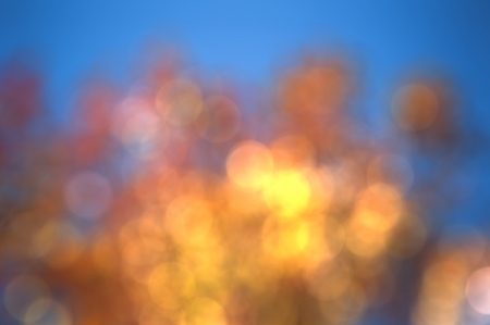 Abstract background bokeh circles  photo