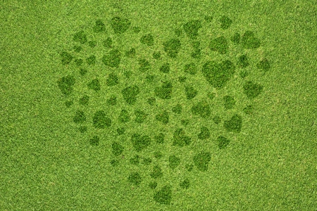 Heart icon on green grass background photo