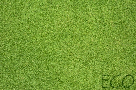 Eco letter on green grass texture and background  photo