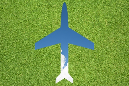 Plane icon with grass and sky photo