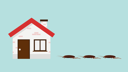 cockroach and house vector. wallpaper. free space for text. copy space.