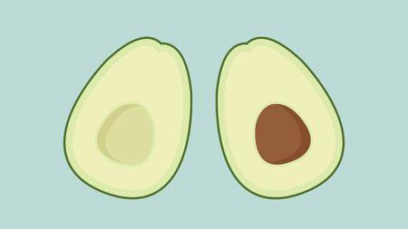 Avocado vector. Avocado on white background. Çizim