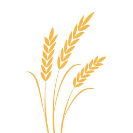Rice symbol. Oat symbol vector. wallpaper. logo design. 向量圖像