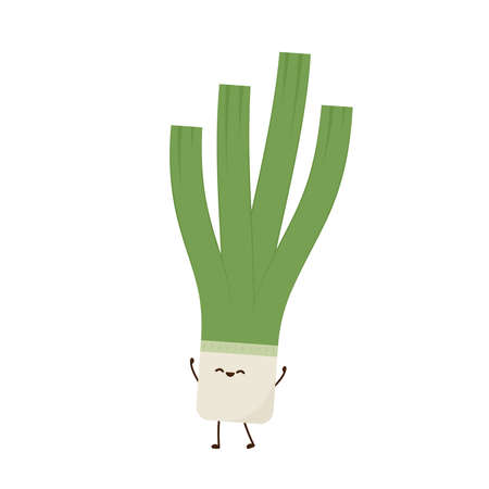 Spring onions character. Spring onions vector. Spring onions on white background.