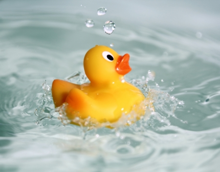 yellow rubber toy duck swimming in water photo