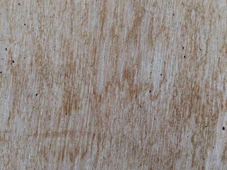 rough: Rough wooden board texture