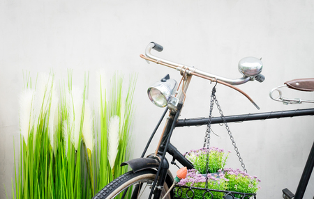 Vintage Bike in green garden with gray wall background.