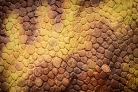 오렌지 파충류 공룡 피부 질감 배경