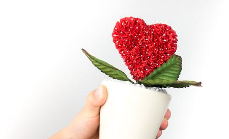 Hand holding heart flower pot enviromental care concept.