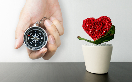 Heart shaped Flower pot on black desk with compass for love direction