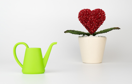 Heart flower with watering toy plot for love growth concept