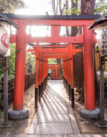 Tokyo, Japan - May 8, 2017: The Red wooden gate passage for Toshogu shrine in Ueno park.