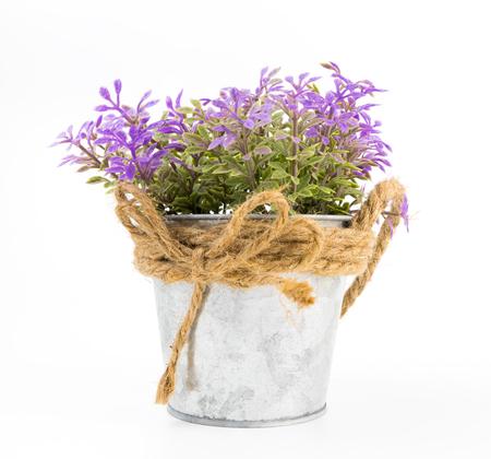 白で隔離銀の金属製のバケツで紫の花