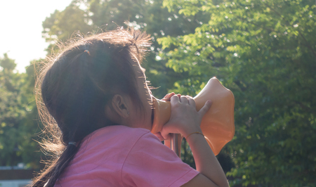 girl is screaming out into playground Megaphone Banco de Imagens - 82915428