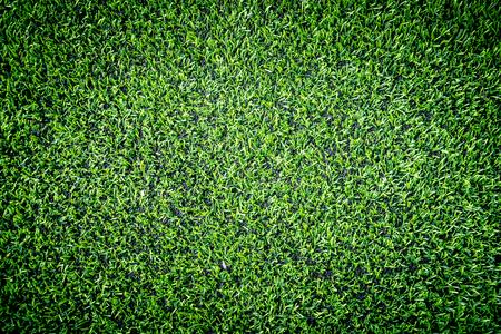 실내 스포츠 필드에 대한 녹색 유물 잔디 상위보기
