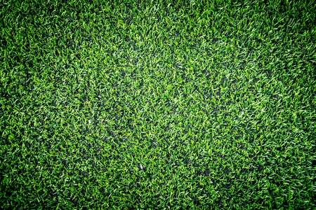 Green Artifact grass top view for indoor sport field