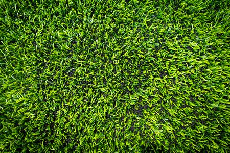 실내 스포츠를위한 유물 스포츠 잔디가 상위보기를 마감했습니다.
