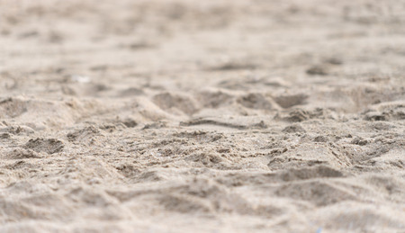 Clean fine sand surface for texture and background.