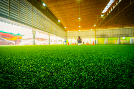 Artifact grass Indoor Soccer training field stadium 版權商用圖片