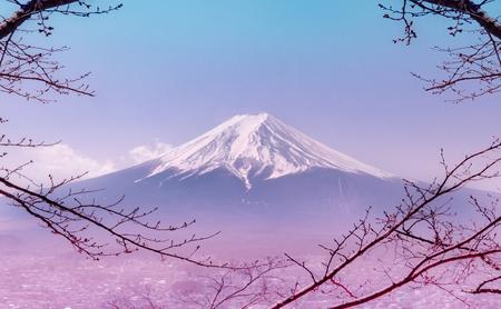 Montagna Fuji in inverno incorniciata da un albero autunnale secco in colore rosa