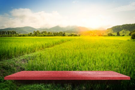 Red wooden shelf on paddy farm nature background for product display