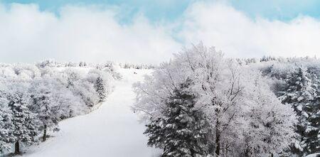 Skii Snow slope on Zao Onsen Skii resort in Snow forest, Sendai Japan