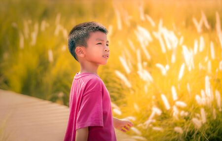 Asian boy is walking in a golden field for nature summmer freedom and happiness concept