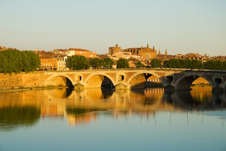 Toulouse (France) cityscape (sunset): Pont Neuf bridge,Garonne river,church,canal,tree and sky.