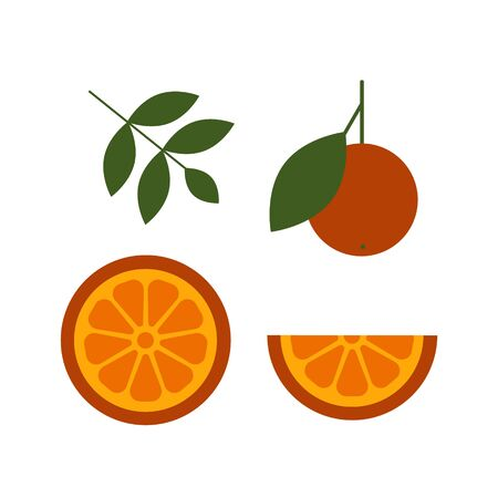 Orange vector set with slides peaces and leaves. Fresh citrus fruit for your design