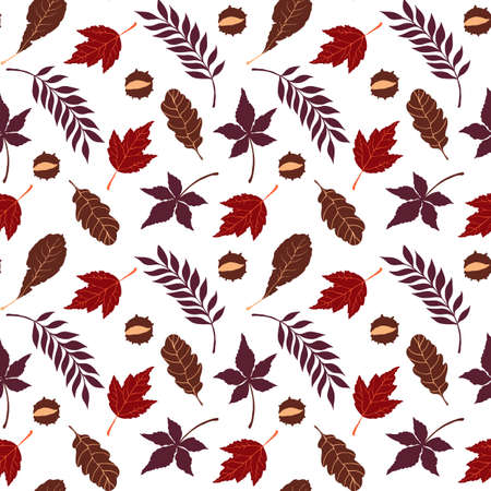 Fall vector seamless pattern with autumn leaves and chestnut on white background.