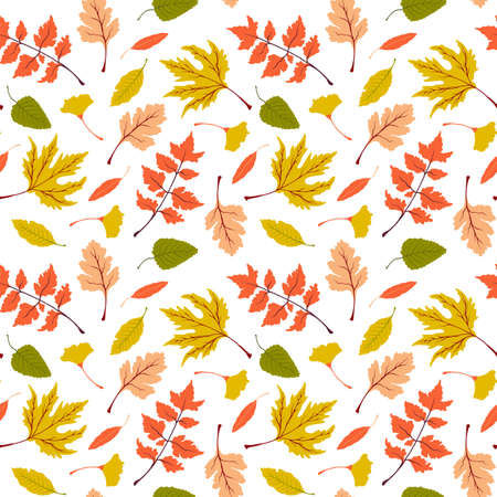 Seamless vector fall pattern with bright autumn leaves. Beautiful floral repeat pattern with colorful autumn leaves on white background