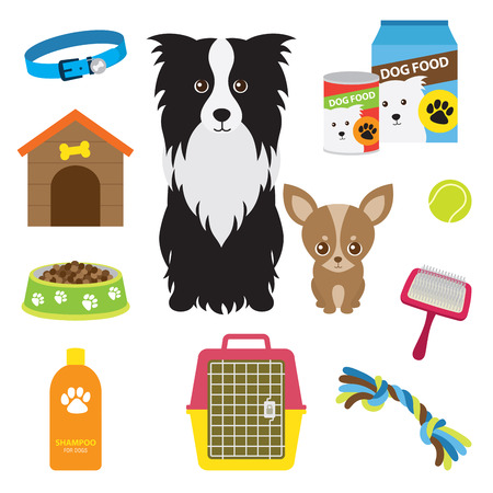 Vector illustration of supplies for dog