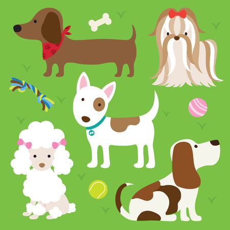 Vector illustration of dogs with toys  Vectores