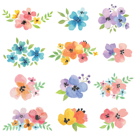 floral: Watercolor Vector Flowers