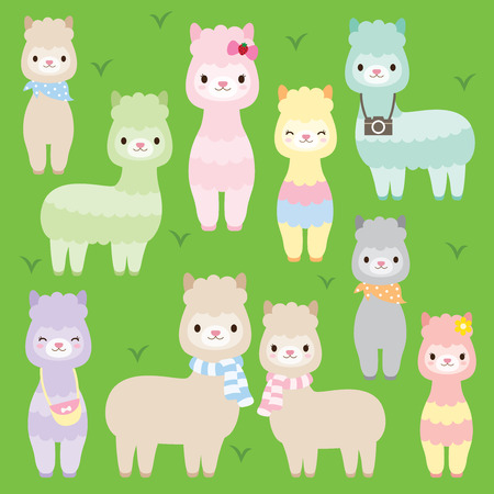 illustration of cute alpacas or llamas in different colors.